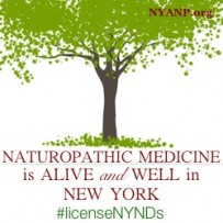 The Value of Naturopathic Medicine in New York–Part VI:  Patient Satisfaction