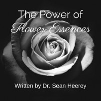 The Power of Flower Essences