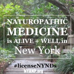 holistic doctor New York